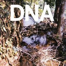 Taste of DNA EP