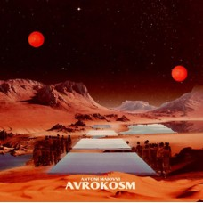 Avrokosm