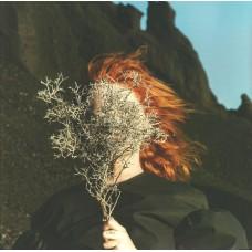 Silver Eye (Clear vinyl)